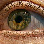 Novo tratamento com células-tronco pode restaurar alguns tipos de cegueira 1