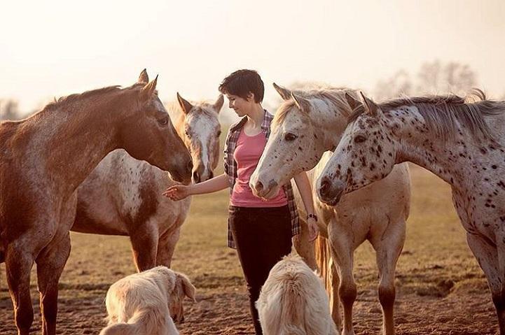 Fotógrafo alemão captura a beleza e força dos cavalos selvagens em poderoso ensaio 14