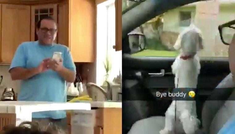 pai-leva-cachorro-erradio