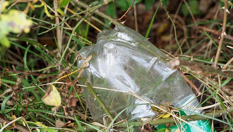plástico-garrafa-pet-mato