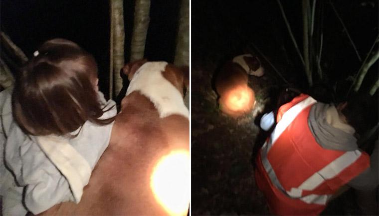 pitbull resgate crianças itália