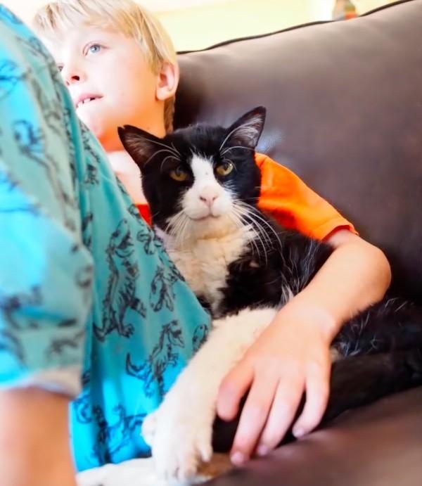 menino gato sofá