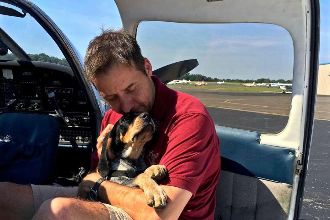 homem avião salvar cães gatos eutanásia