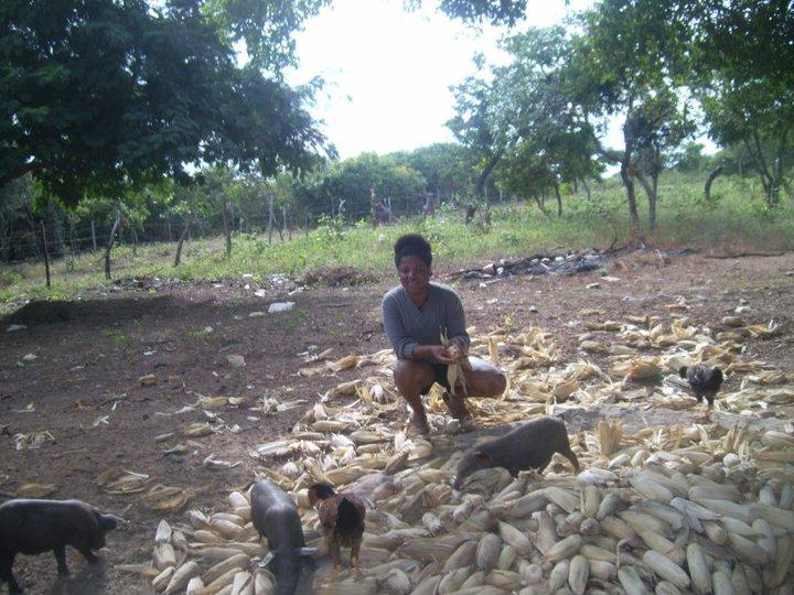 faxineira brasileira sítio minas gerais