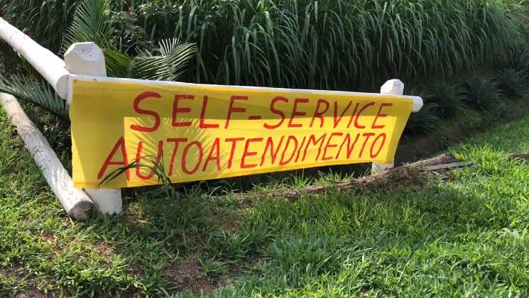 hortifrutigranjeiro self service erechim