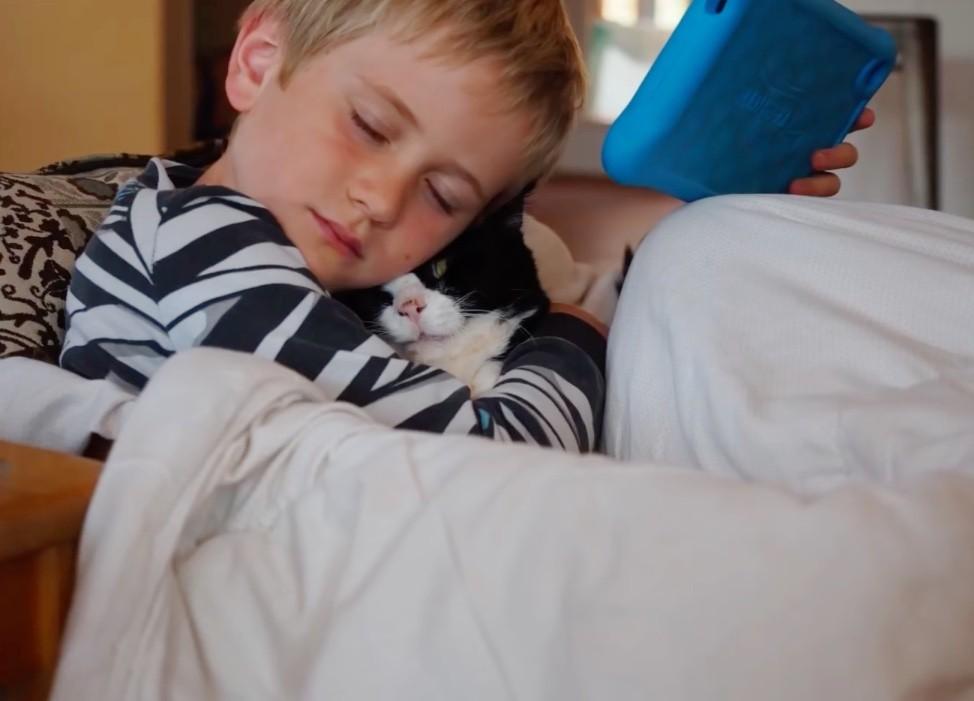 menino abraçando gato debaixo coberta