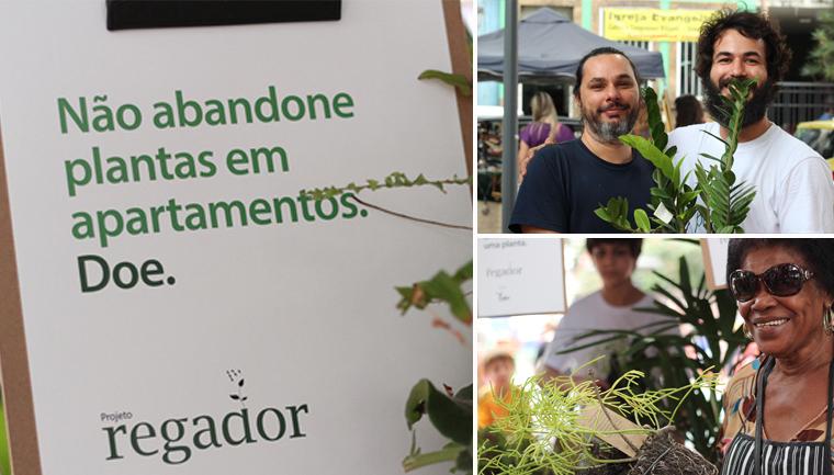 doação plantas apartamento