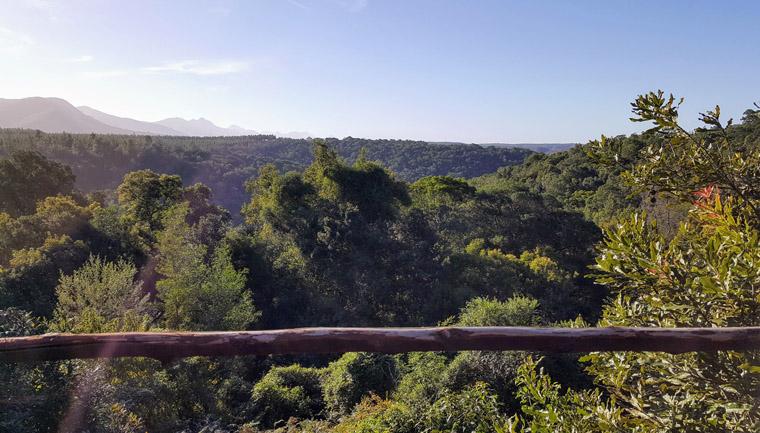 santuários animais selvagens áfrica sul