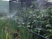 sistema irrigação caseiro baixo custo