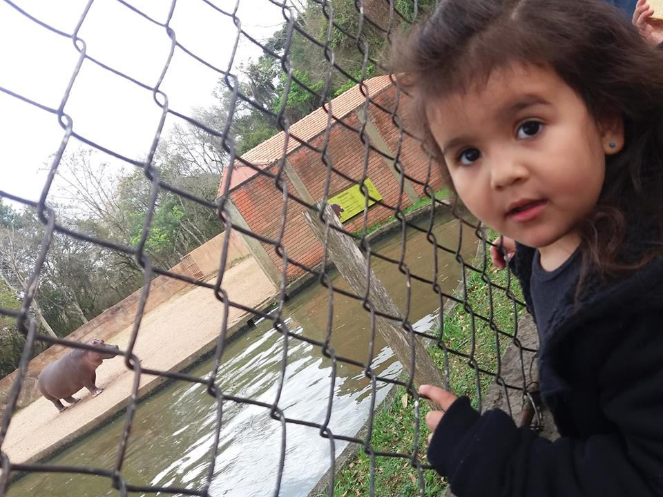Moradores repõem latinhas roubadas salvam passeio crianças
