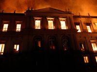 national geographic oferece recursos acervo museu nacional