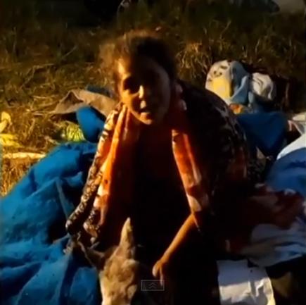 moradores confins salvam égua ferida magra desidratada