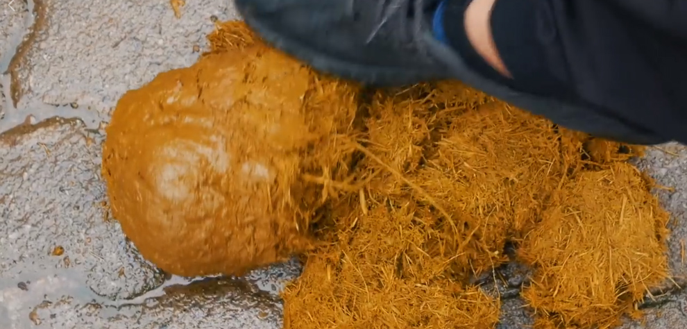 cocô elefantes vira papel artesanal