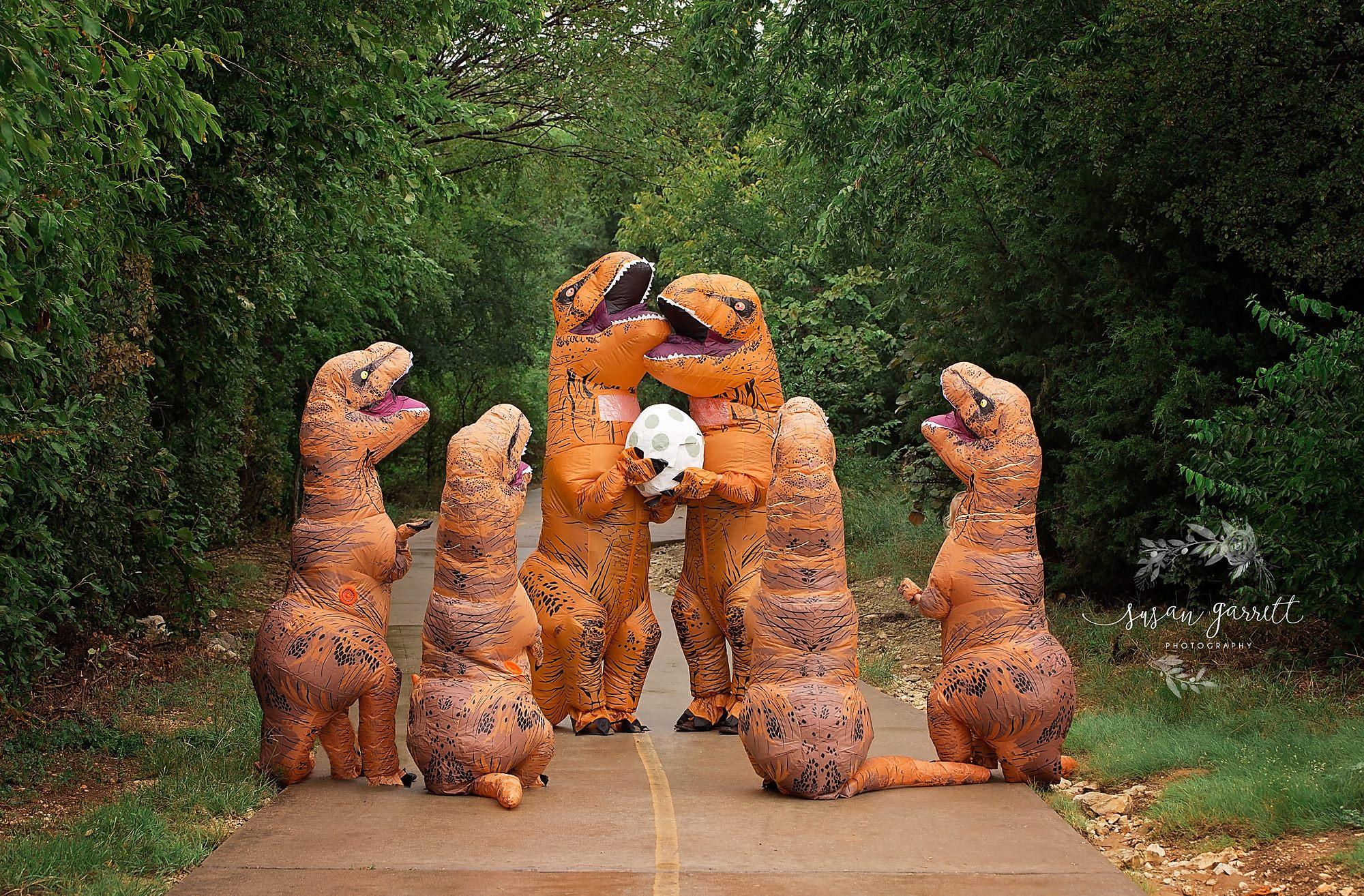 dinossauro gravidez