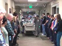 órgãos doadores