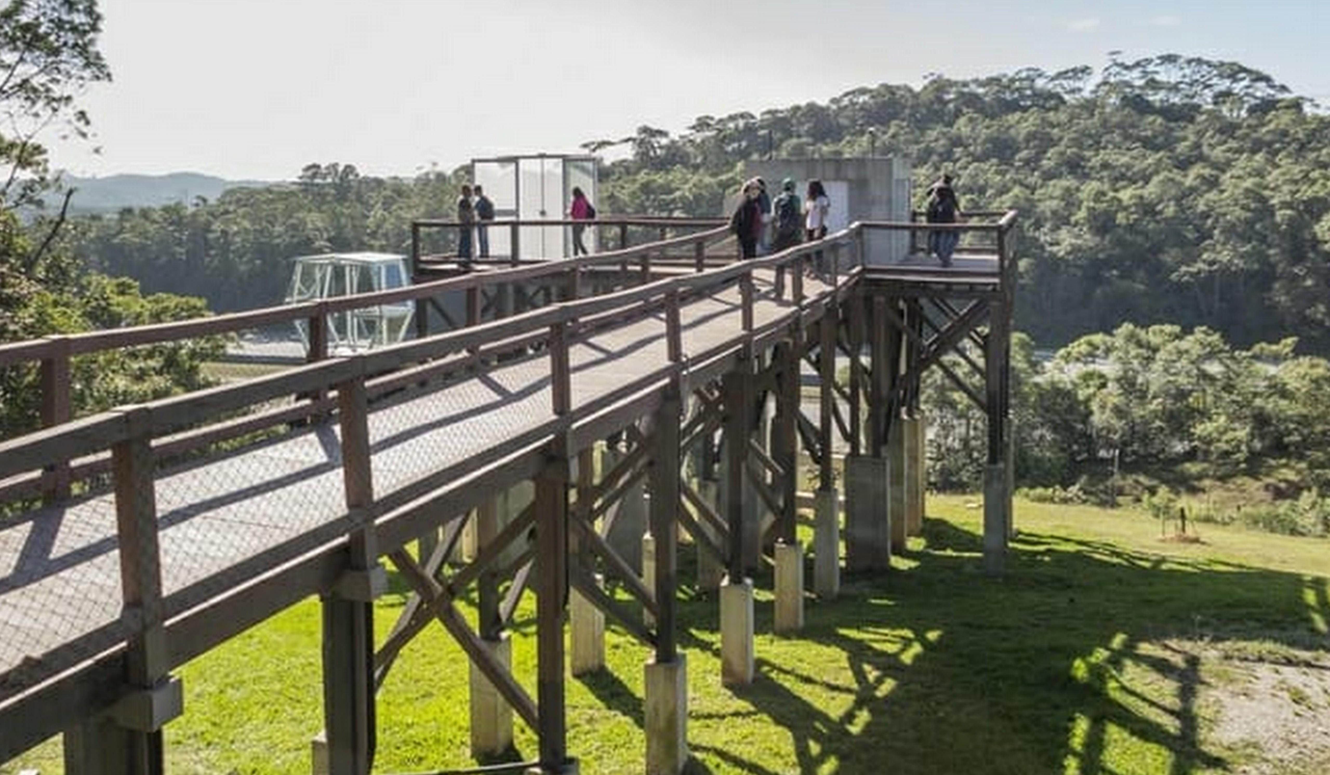 Parque suspenso em meio a Mata Atlântica é inaugurado 1