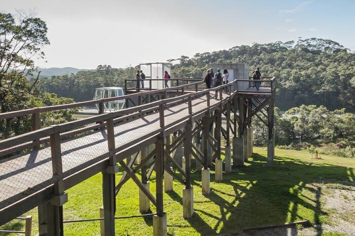 Parque suspenso meio Mata Atlântica inaugurado