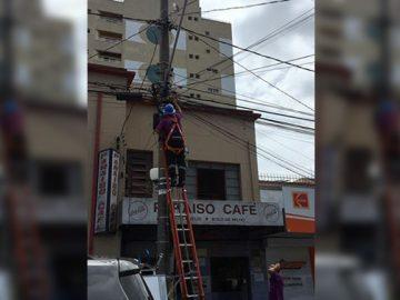 operários salvam passarinho caiu ninho avenida