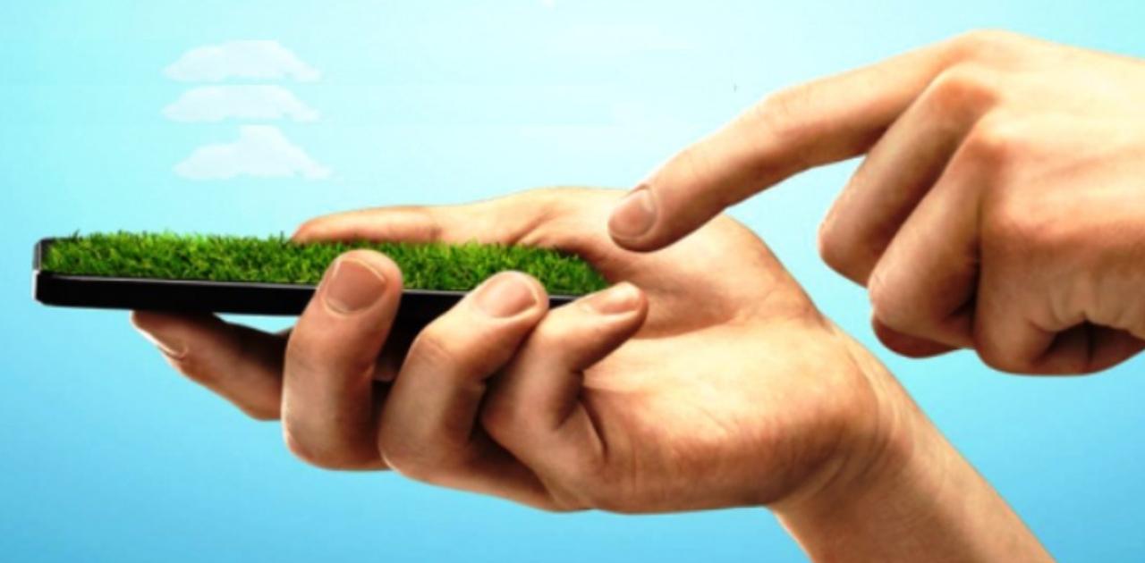 Conheça a Recomércio, empresa que revende celulares em desuso