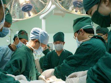 Cientistas agora podem regenerar e reimplantar órgãos do corpo