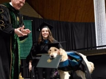 Cão recebe diploma de universidade após acompanhar cadeirante nas aulas