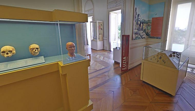 google arts museu nacional disponibilizam tour virtual acervo instituição antes incêndio