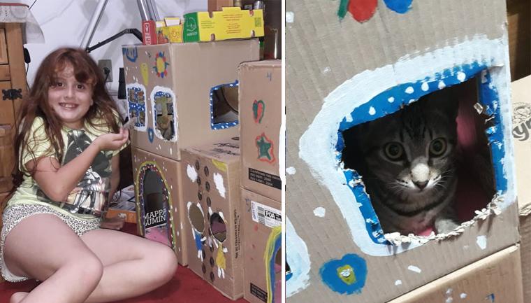 menina faz hotelzinho gata caixas de papelão
