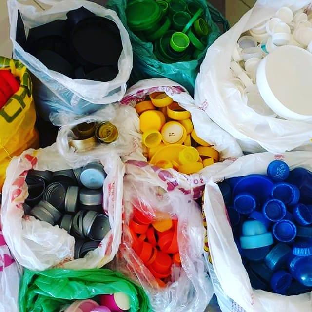tampinhas plásticos financiam castrações animais abandonados santa catarina