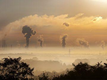 startup comensa impacto ambiental créditos carbono