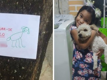 Menina de 4 anos faz cartazes com desenhos à mão para encontrar seu cãozinho 1