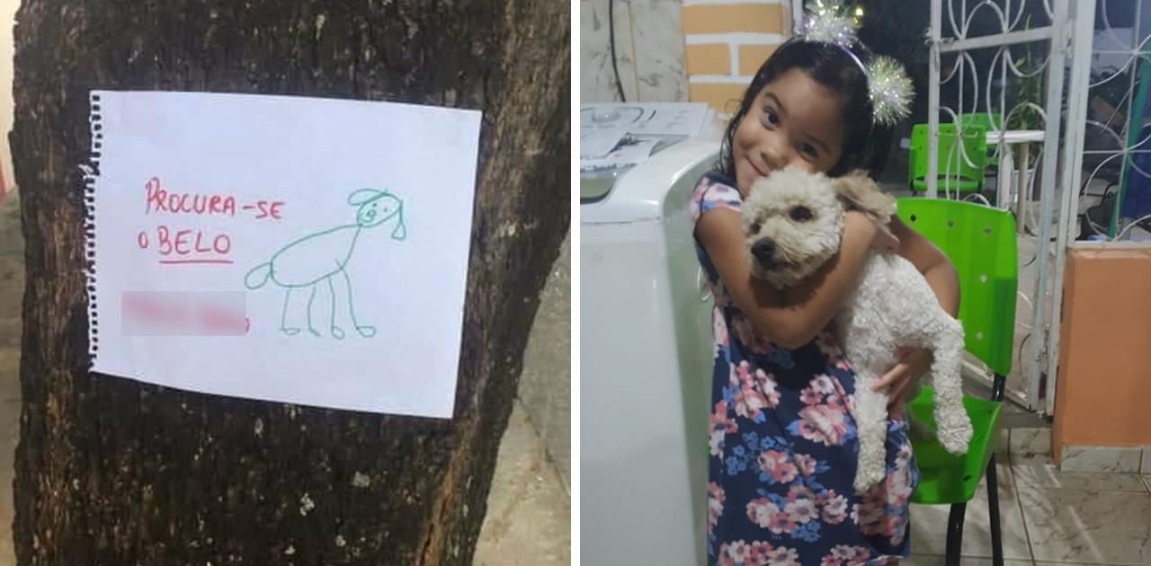 Menina de 4 anos faz cartazes com desenhos à mão para encontrar seu cãozinho 7