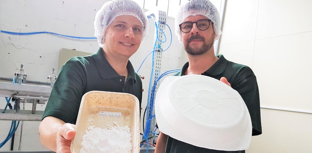 Startup produz embalagens biodegradáveis feitas a partir da mandioca