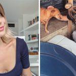 nutricionista Nara Nesteruk doa lucro aula abrigo animais
