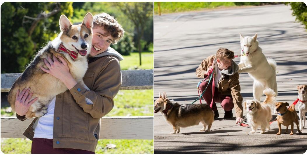 Jovem defensor dos cães cria projeto para salvar filhotes debilitados