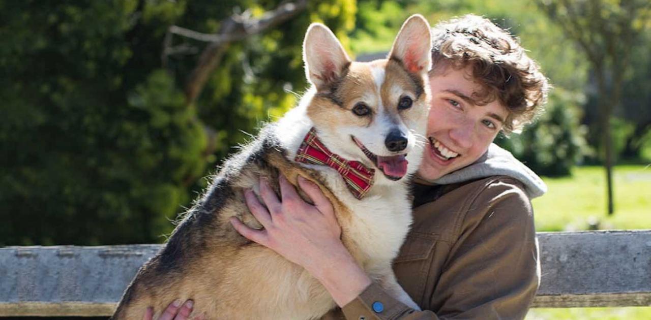 Jovem amante dos cães cria projeto para salvar filhotes debilitados