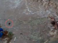 Homem se arrisca em rio no meio da correnteza para salvar cachorra que se afogava