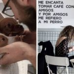 Cafeteria na Espanha vai além das quitandas e quitutes e abre espaço para adoção de filhotes