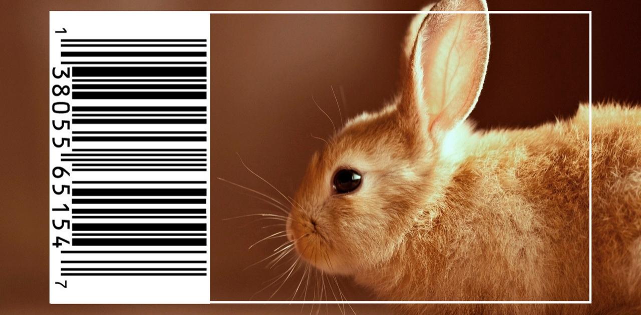 China anuncia fim de testes da indústria de cosméticos em animais