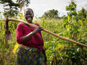 Permacultura empodera mulheres e alimenta 6 mil famílias refugiadas na Uganda 6