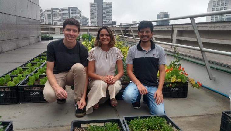 plant fazendas urbanas laje prédios corporativos