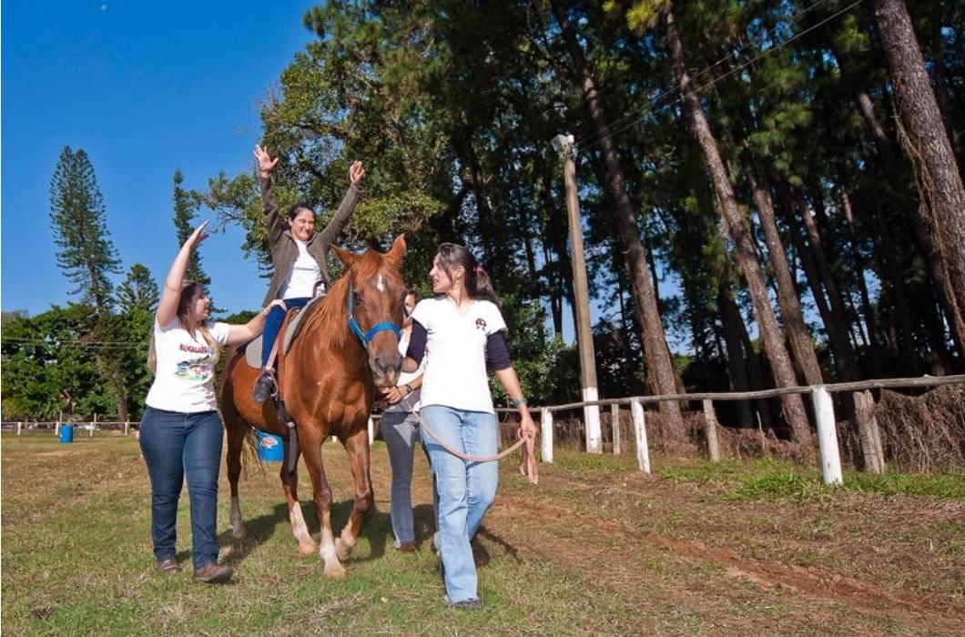 Senado aprova regulamentação da terapia com cavalos equoterapia como método de reabilitação