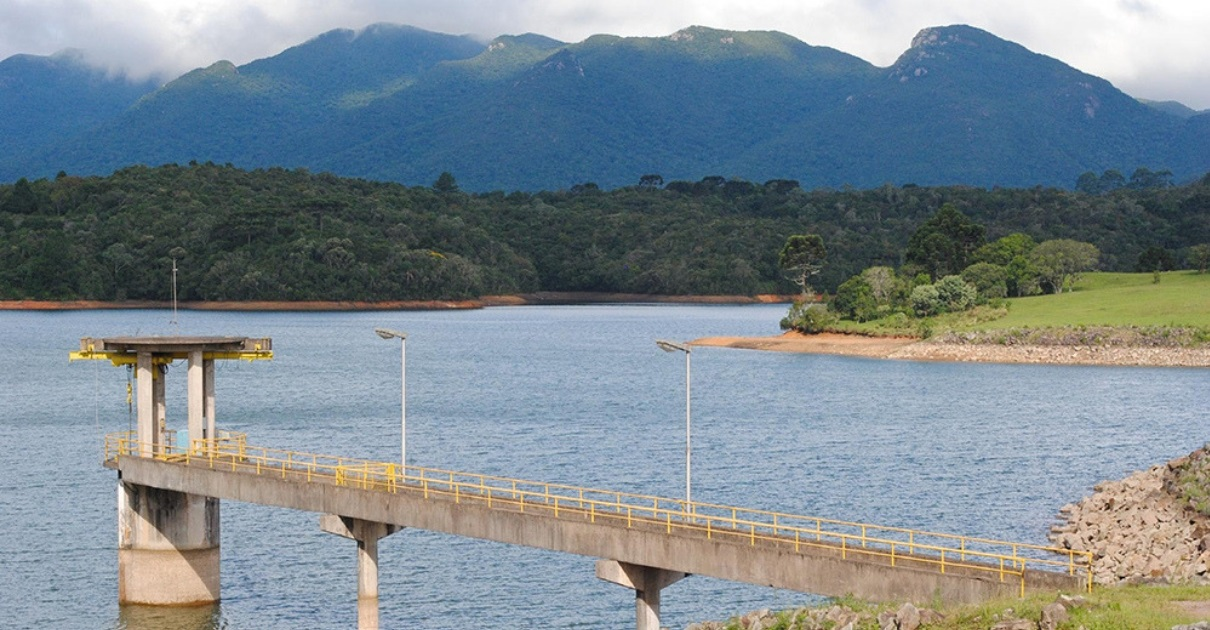 Edital oferece recompensa financeira a proprietários de terras que preservarem áreas naturais