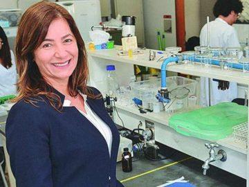 Brasileiros desenvolvem espuma que retira agrotóxico de alimentos