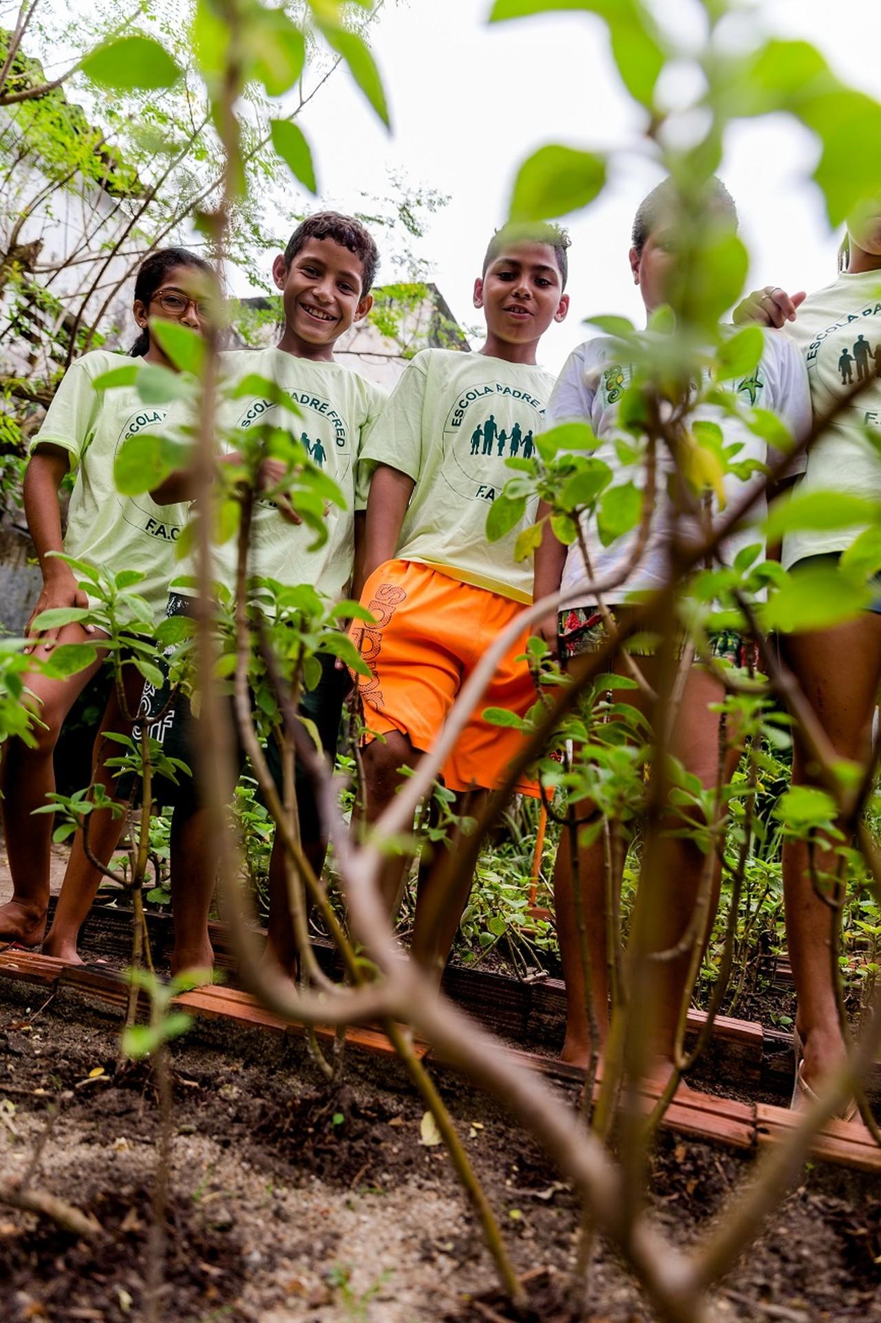 Horta de ervas mantida por crianças produz chás e xaropes de graça em Fortaleza (CE)