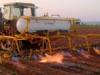 Embrapa lança primeiro livro sobre controle não químico de plantas daninhas