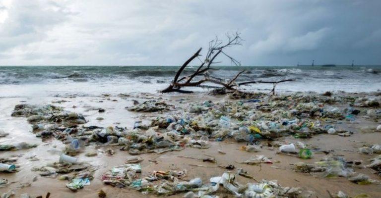 Cânhamo pode ser a solução definitiva contra a poluição em massa do plástico