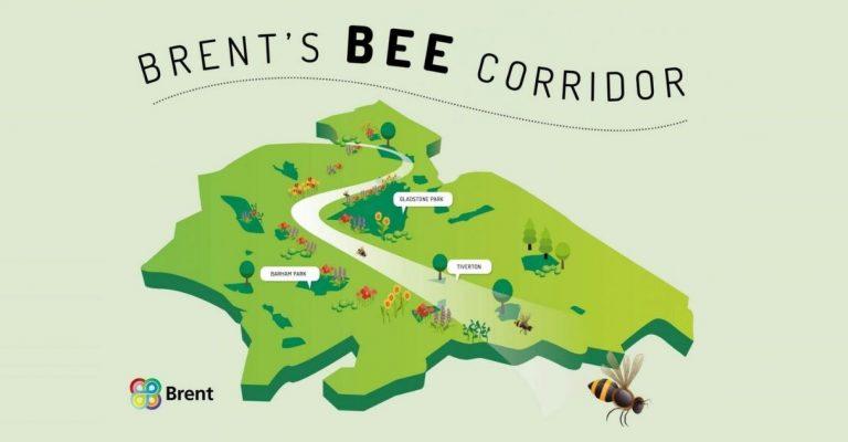 Bairro em Londres vai criar 11km de corredor de flores para abelhas