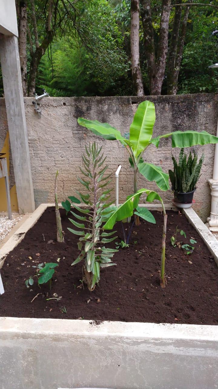 Morador constrói 'ecofossa' para comunidade sem esgoto em Colombo (PR) 6