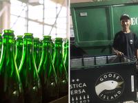 projeto reciclagem vidro transforma vida catadores