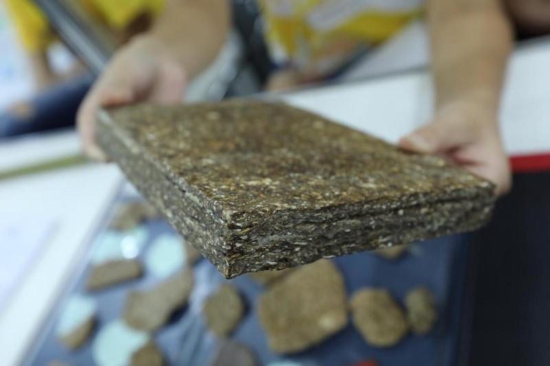 Madeira sustentável feita com casca de mandioca é resistente até contra o fogo